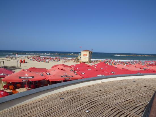 Bograshov Beach: Praia