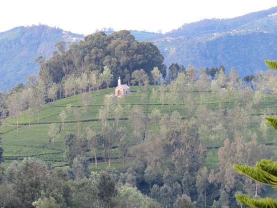 Nahar Retreat & Spa: Balcony View