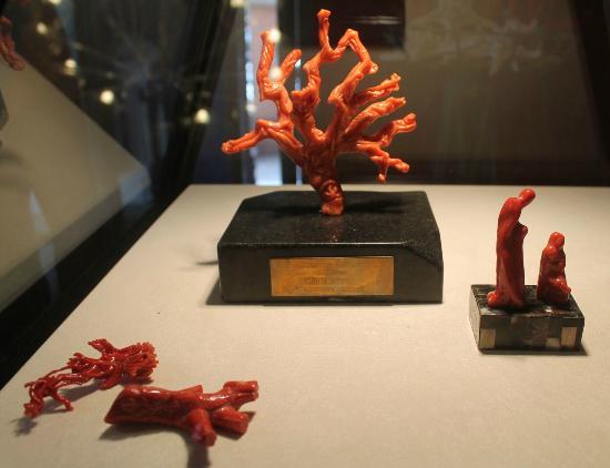 The Coral Museum: Museo del corallo