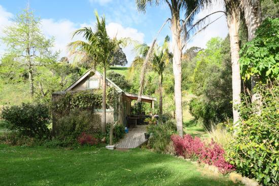 Purangi Gardens Accommodation: the sunflower chalet