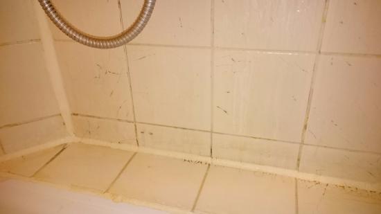 Fletcher Hotel-Restaurant Valkenburg: tegels in douche kapot en ook erg smerig zoals je ziet