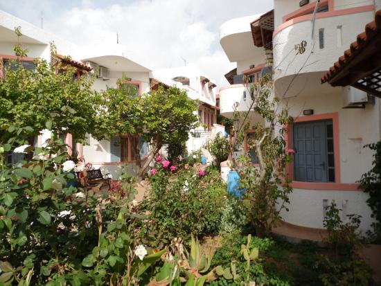 Palmira Apartments : giardino all'ingresso