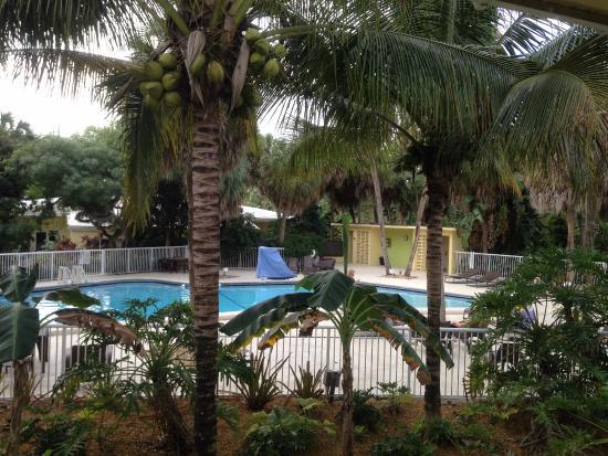 Hotel Indigo Miami Lakes Reviews
