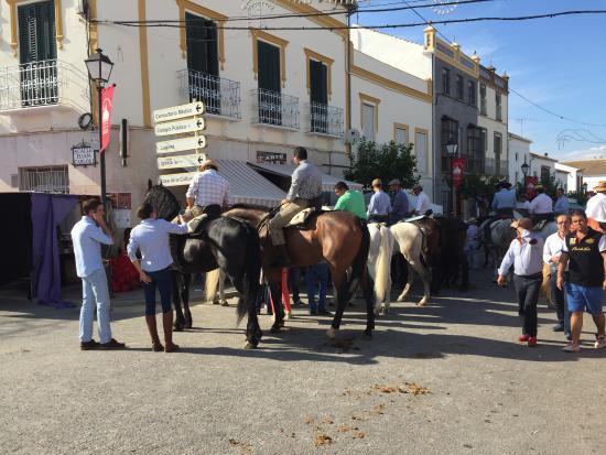 Fuente de Piedra, Spanien: horse fair