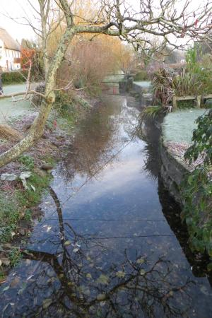 New Forest National Park, UK: The nearby stream that wends through the village