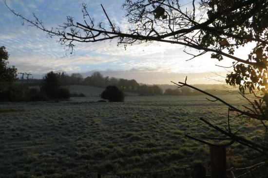 New Forest National Park, UK: Frosty rural view from close by