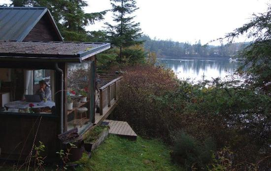 Longhouse B&B: The cabin & view