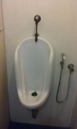 Coffee Cube: male urinal just in front of the female urinal
