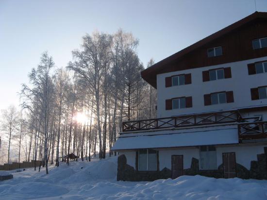 33 Bears Hotel Club