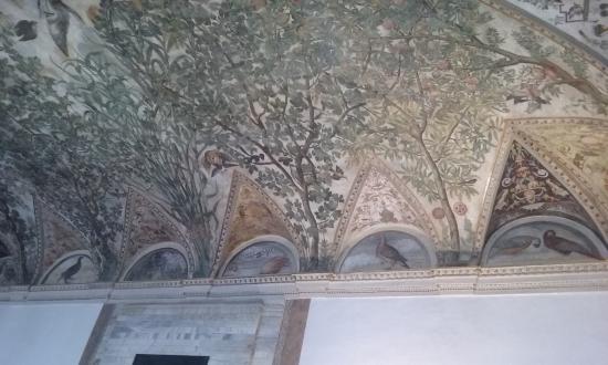 Palazzo Grimani: soffitto affrescato