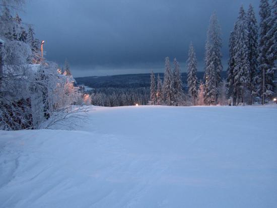 Palkane, ฟินแลนด์: Вечерний склон