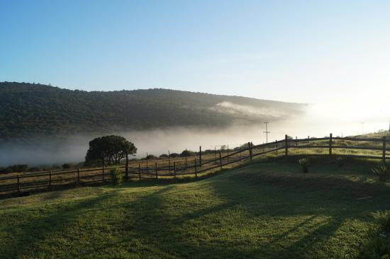 Paterson, جنوب أفريقيا: Im Nebel