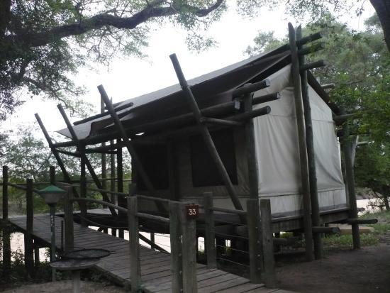 Tamboti  Or  Bed Tents Review