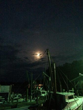 Urbanna, VA: Boats