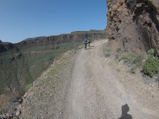 Grand Canyon MTB tour - Picture of Free Motion Playa del
