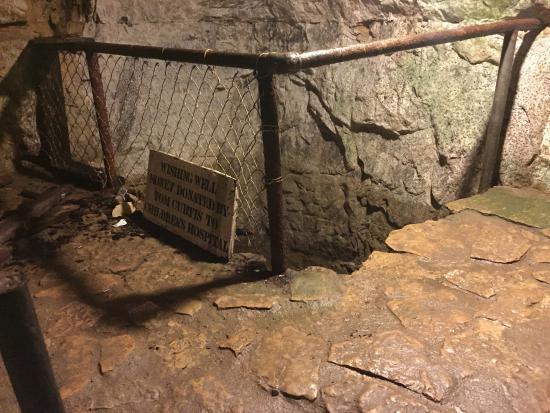Wine Cave Tours Stillwater Mn