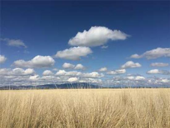La Grande, OR: Views
