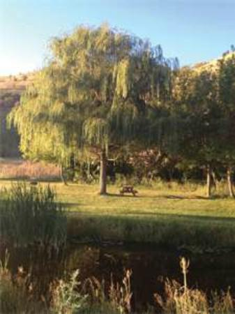 Grande Hot Springs RV Resort: Grounds