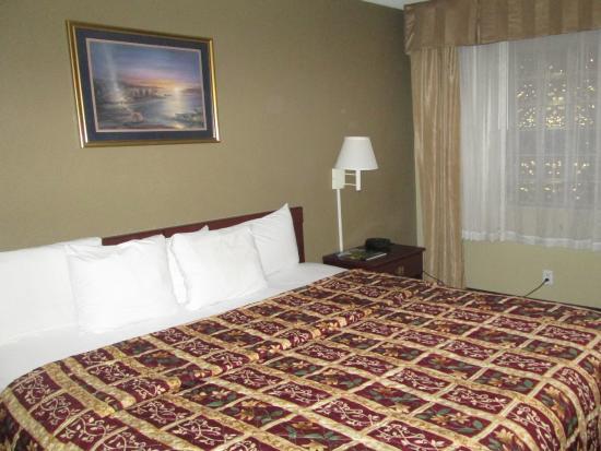 Detroit Regency Hotel: King Size Bed