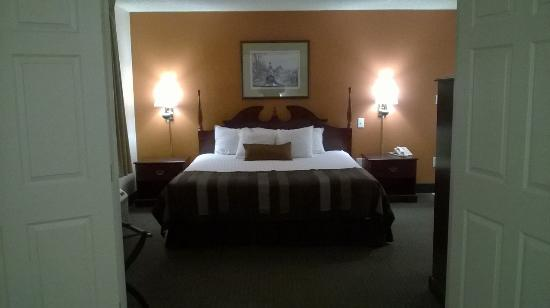 Wingate by Wyndham Indianapolis Airport-Rockville Rd: bedroom