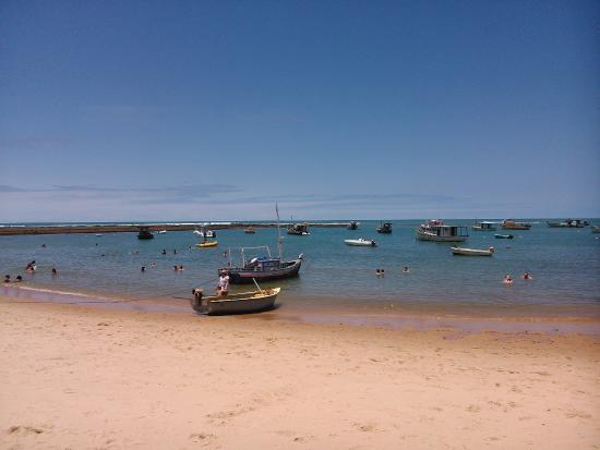 55bb0dd7e37 Muitas lojas na vila - Foto de Praia do Forte