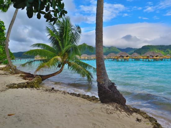 Le Taha'a Island Resort & Spa: Beach