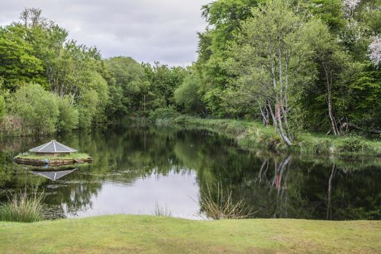 Tralee Bay Holiday Park: The pond