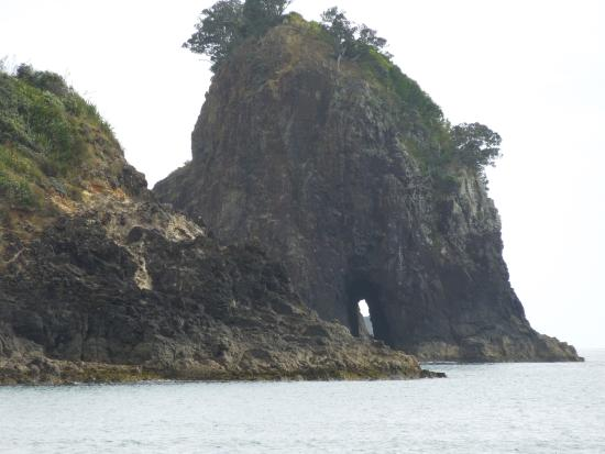 Go Great Barrier Island - Day Tours: Awana Bay
