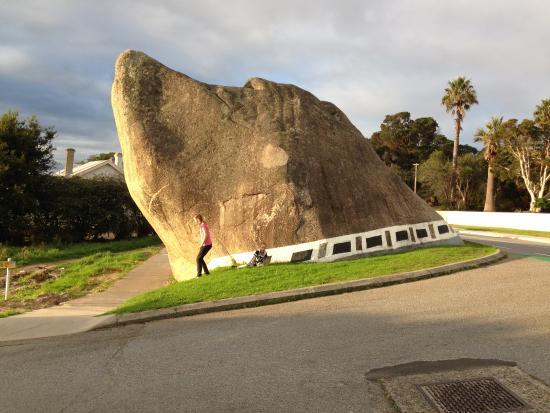 Dog Rock: Dog in rock