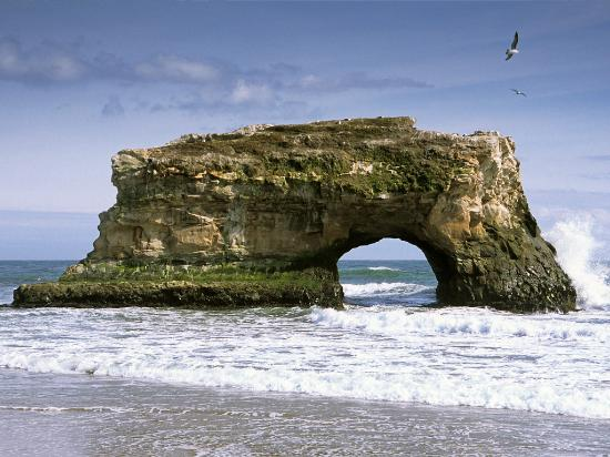 Santa Cruz, Kalifornia: Natural Bridges State Beach - Photo courtesy of Denis Jockmans