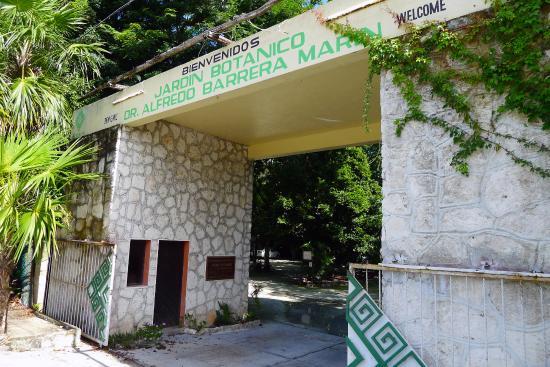 botanical-garden-in-puerto-morelos