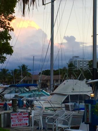Cactus Jacks Waterfront Bar Grill View Of The Boats On C From