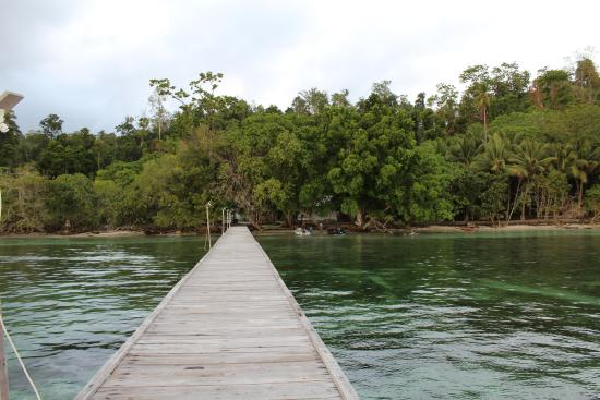 Raja ampat dive resort 2018 reviews indonesia west - Raja ampat dive resort ...