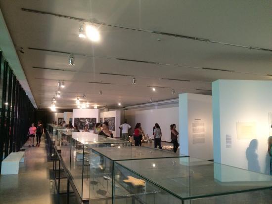 Modern Art Museum Of Sao Paulo: MAM Museu De Arte Moderna De São Paulo