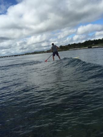 Surfinggreen: photo1.jpg