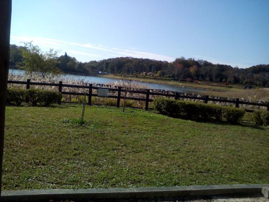 Ima Pond