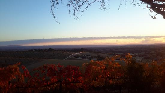 Seven Quails Vineyards Bed & Breakfast: Sunrise from the Room with a Spectacular View