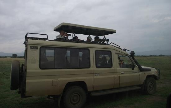 4wd 8 Seater Jeep With Pop Up Roof Picture Of African Jungle
