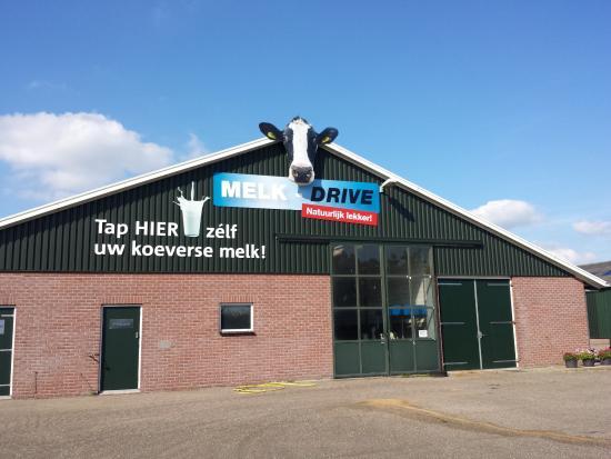 Melk-Drive & Excursieboerderij