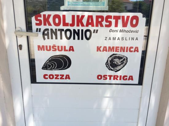 Skoljkarstvo Antonio : вывеска