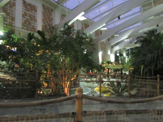 Childrens Pool Picture Of Center Parcs Woburn Forest Bedford Tripadvisor