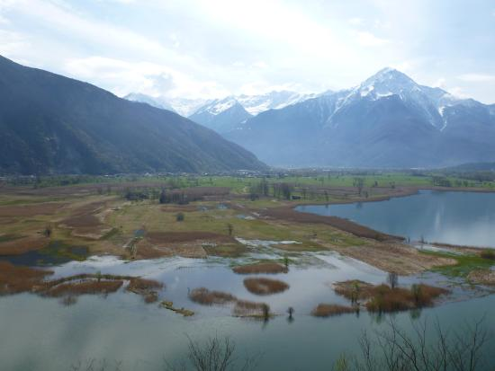 Lago Di Mezzola Picture Of Lake Como Lombardy Tripadvisor
