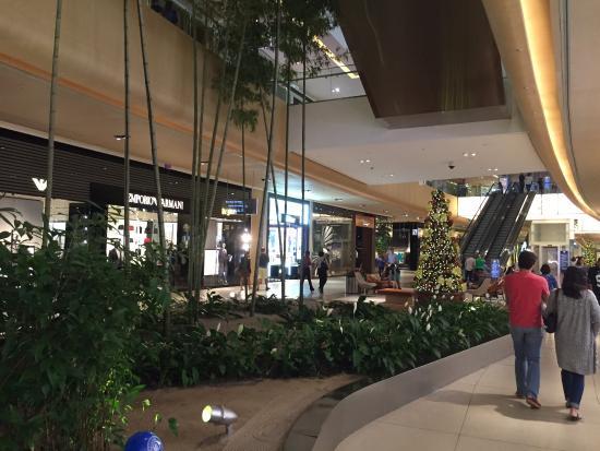 Bikini conestoga mall village