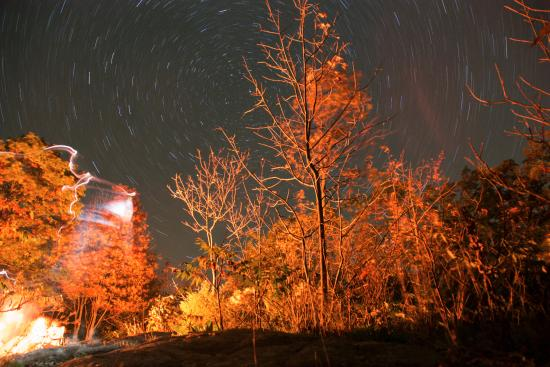 Port Severn, Canada: Star trails from our campsite