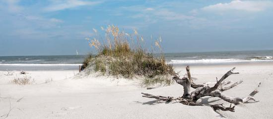 Hammocks Beach - North Carolina is celebrating 100 years of NC State Parks in 2016.