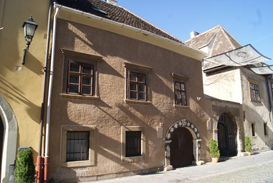 Sopron Museum - Old Synagogue