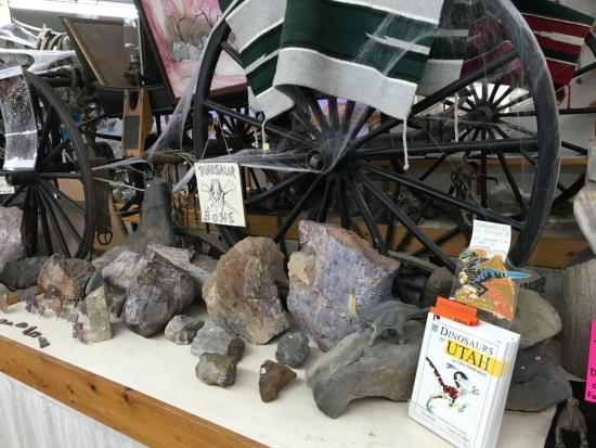 Moab Rock Shop: Perfect for the dinosaur fan in your family.