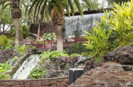 Jardin aquatico jardin aquatico for Jardines acuaticos