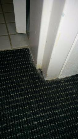Bathroom Renovations Penrith dirt at bathroom doorway - picture of mercure penrith, penrith