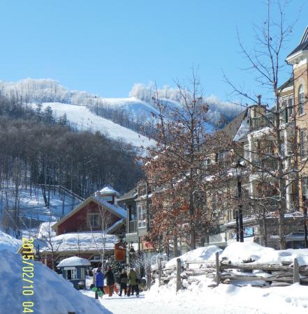 Cruiser Run Picture Of Blue Mountain Resort Blue